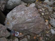 Pirstekartio Keurusselän granitoidissa. Kuva: Teemu Öhman